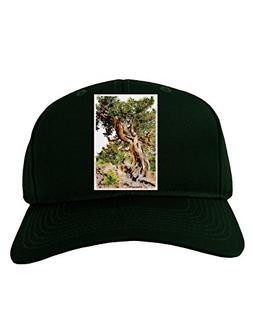 TOOLOUD Bristlecone Pines Adult Dark Baseball Cap Hat - Hunt