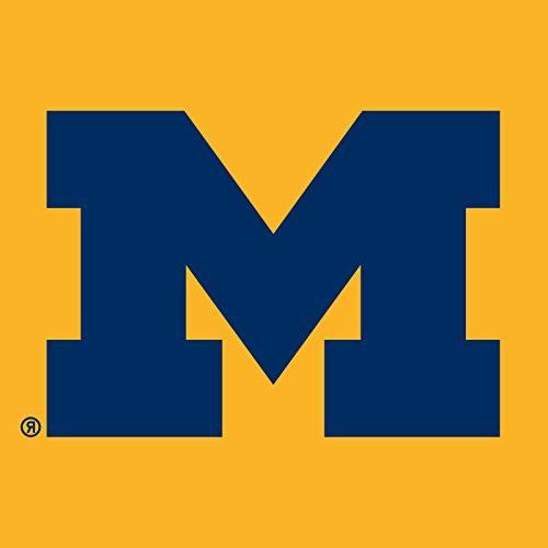 Michigan Wolverines Logo Hoodie - Gold